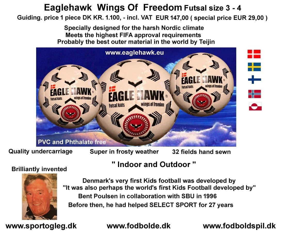 eaglehawk_wings_of_freedom_futsal_2020_3719